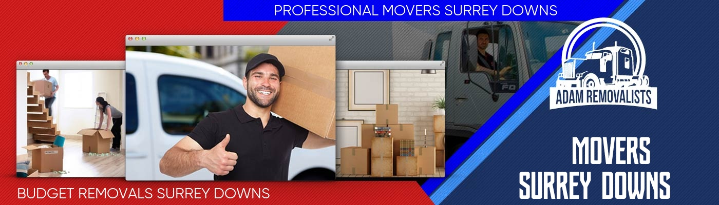 Movers Surrey Downs
