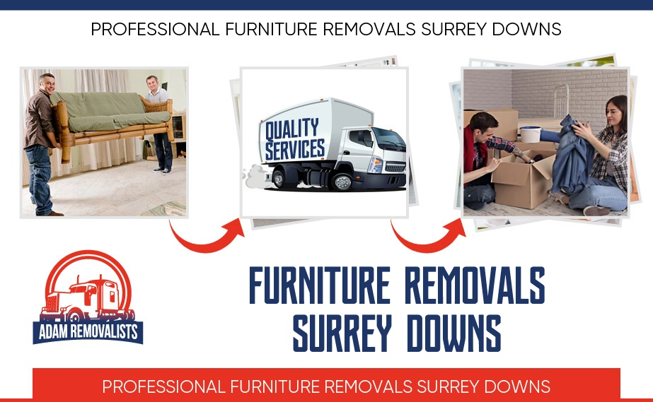 Furniture Removals Surrey Downs